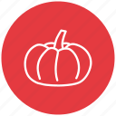 food, fresh, fruit, melon, water icon