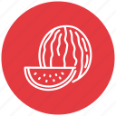 food, fresh, fruit, melon, water, watermelon icon