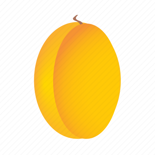 apricot, food, fruit, healthy, meal, sweet icon