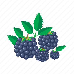 blackberry, food, fruit, healthy, meal icon