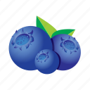 blueberry, food, fruit, healthy, meal icon