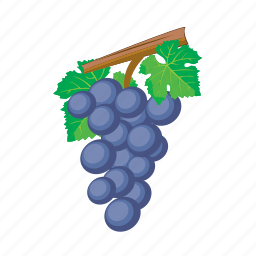 food, fruit, grapa, grapes, meal icon