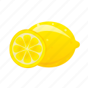 food, fruit, healthy, lemon, meal icon