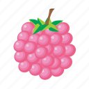 food, fruit, healthy, raspberry, sweet icon