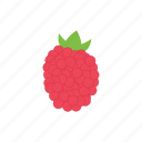 food, redmulberry, fruit, lychee, juicy icon