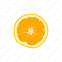 berry, crop, food, fruit, grain, orange, vegetable icon