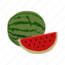 berry, crop, food, fruit, grain, vegetable, watermelon icon