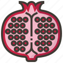 diet, fruits, health, pomegranate, tropical icon