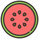 diet, fruits, health, tropical, watermelon icon