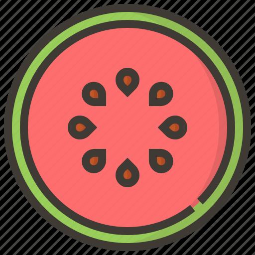 diet, fruits, health, tropical, watermelon icon