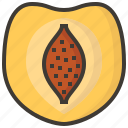 diet, fruits, health, peach, tropical icon