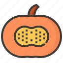 diet, fruits, health, pumpkin, tropical icon