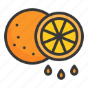 food, fruit, healthy, orange, vitamin icon