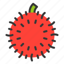 food, fruit, healthy, rambutan, vitamin icon