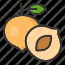 food, fruit, healthy, nectarine, vitamin icon