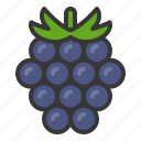 blackberry, food, fruit, healthy, vitamin icon