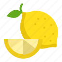 food, fruit, healthty, lemon, lime, vitamin icon