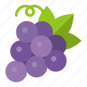 food, fruit, grape, healthty, vitamin icon