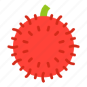 food, fruit, healthty, rambutan, vitamin icon