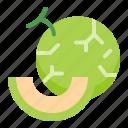 food, fruit, healthty, melon, vitamin icon