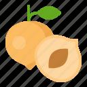 food, fruit, healthty, nectarine, vitamin icon