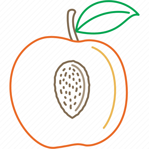 fresh, fruits, organic, peach, peaches, soft fruit icon