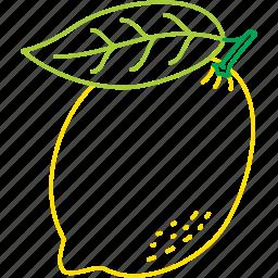 lemon, lemonade, organic, vitamin c, yellow lemon icon