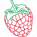 berries, fruits, raspberries, raspberry icon