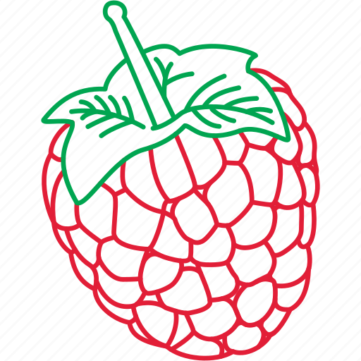 Berries, fruits, raspberries, raspberry icon - Download on Iconfinder