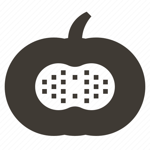 diet, food, fruits, health, pumpkin, solid, tropical icon
