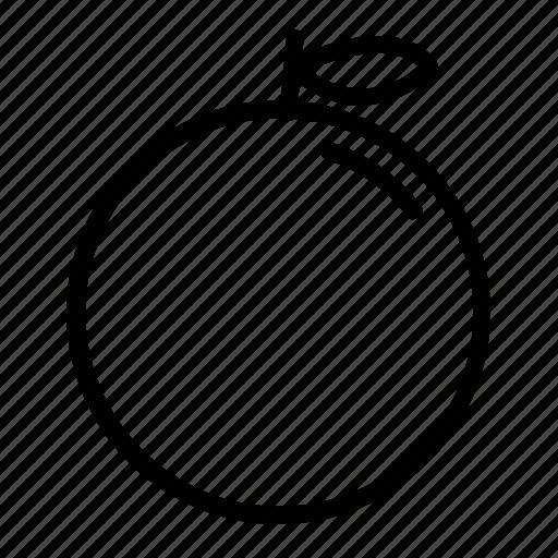 Food, fresh, fruit, orange icon - Download on Iconfinder