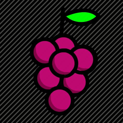 food, fresh, fruit, wine icon