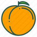 apricot, food, fruit, healthy, organic icon