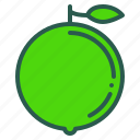 food, fruit, healthy, lime, organic icon