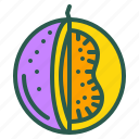 food, fruit, healthy, organic, passion icon