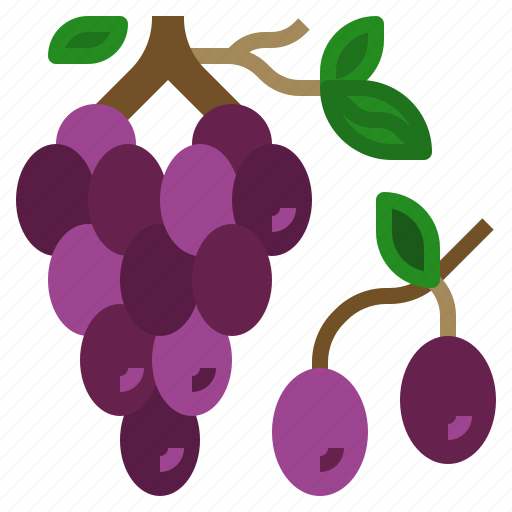 berry, bouquet, food, fruit, grapes icon