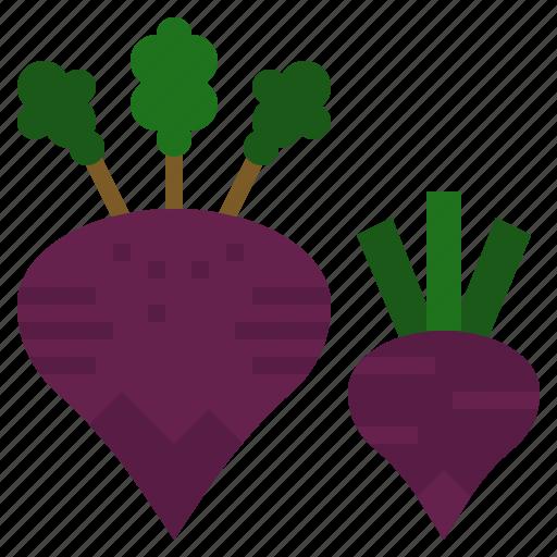 beet, diet, food, vegan, vegetarian icon