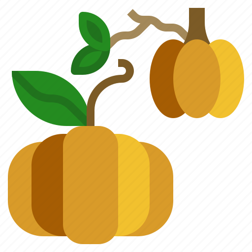 diet, food, fruit, pumpkin, vegetarian icon