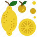 candy, food, fruit, lemon, sweet icon