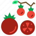 diet, food, fruit, tomato, vegetarian icon