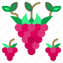 food, fruit, organic, raspberry, vegan icon