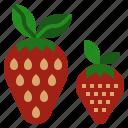 diet, food, fruit, strawberry, vegetarian