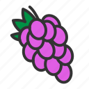 fresh, fruit, grape, organic, sweet icon