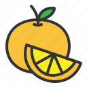 fresh, fruit, orange, organic, sweet icon