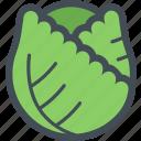 cabbage, cooking, food, healthy, seasoning, vegetable, vegetables
