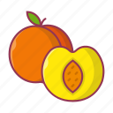 peach, apricot, food, fruit, juicy icon