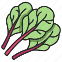 leaf, chard, plant, healthy, organic, vegetable, vegetarian icon