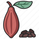 food, cocoa, seed, chocolate, cacao, organic, bean icon