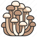 white, mushroom, healthy, food, organic, vegetable icon