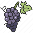 grape, fresh, healthy, food, fruit, bunch icon